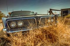 Take Me To The Ballroom (Wayne Stadler Photography) Tags: 2018 festival art brc nevada desert dusty usa blackrockcity burningman playa