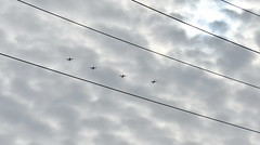 VT_ROTC_FlyOver (T's PL) Tags: aircraft americansingleenginedadvancedtraineraircraft d7200 nikon nikond7200 nikondslr nikontamron plane roanoke roanokeva t6aircraft tamron18400 tamron18400f3563diiivcpzd tamron18400mmf3563diiivchldmodelb028 va virginia vtrotc
