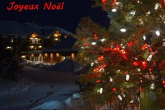 Joyeux Noël (Olivier Simard Photographie) Tags: canada amériquedunord saintmicheldessaints québec lactaureau laurentides pourvoirie neige froid auberge grandnord raid hiver gelée northamerica quebec laketaurus outfitter snow cold hostel winter frost nocturne night noël illuminations guirlandes sapins longuepose féérie couronne photodenuit aubergedulactaureau chat fenêtres architecture boiseries châlet christmas tinsel firs nightlife longexposure enchantment crown nightshot laketaureauinn cat windows woodwork chalet