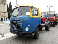 OM Tigre S (Actros1857LS) Tags: om tigre s compressore turbo trattore sattelzug camion truck trucks lkw tractor oldtimer epoca