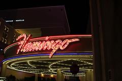 Flamingo Hotel (olgatticus) Tags: flamingo las vegas lasvegas usa nevada lights night canon eos750d