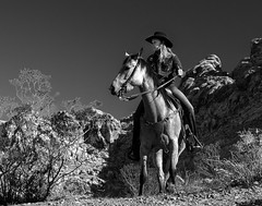 02469376422318-111-19-04-A Cowgirl and Her Horse-4-Black and White (You have failed me for the last time Jim) Tags: 2018 america april canon5dmarkiv mojavedesert nevada people redsprings tamron2470mmf28divcusdg2 usa calicobasin cowboy cowgirl horse horseback spring monochrome blackandwhite