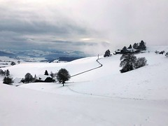 Winter 2019: Bei Bluntschi Arni (oberhalb Lütiwil) (Martinus VI) Tags: winter winterlandschaft hivers schnee snow nieve neige emmental kanton canton de bern berne berna berner bernese schweiz suisse suiza switzerland svizzera swiss y190112 martinus6 martinus6xy martinus martinusvi