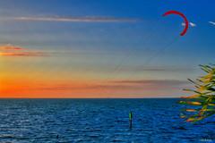 Spectacular Scene Tampa Bay Florida Sunset Adventures - IMRAN™ (ImranAnwar) Tags: horizon surfing d850 nikon tampabay water glowing apollobeach clouds wind adventure ocean weather seaside reflections parachute waves bay palmtree imrananwar lifestyle florida imran unitedstates us