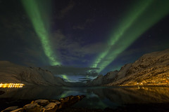 aurores à Ersfjordbotn (jarguel) Tags: ersfjordbotn norvège norway troms canon canon6d samyang ciel sky nuit night aurore northernlights aurora