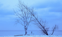winter journeys (Explored 04/16/19) (ocarmona) Tags: ektachrome 64t epy canon canoneos1n beaches toronto woodbinebeach winter 2019 24105 tungsten