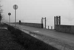 Bridges (Listenwave Photography) Tags: asphalt road roads walk trip morning haze bicycles journey urban sigmadp3m foveon spring city sanktpetersburg listenwavephotography