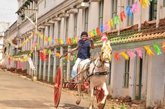 Kaavalan UHD (Thalapathy Rasigan) Tags: kavalan kaavalan uhd hd thalapathy actor vijay asin bodyguard gajan