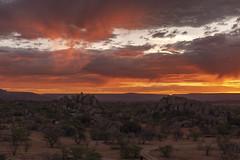 _RJS3540 (rjsnyc2) Tags: 2019 africa d850 himba landscape namibia night nikon outdoors photography remoteyear richardsilver richardsilverphoto safari sunset travel travelphotographer animal camping nature sky stars tent wildlife