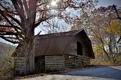 Roadside Barn (mevans4272) Tags: barn mountains road trees sun fall