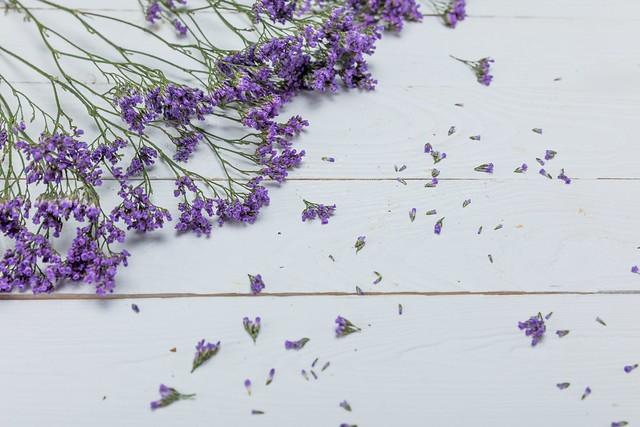 Обои фон, Цветы, Лаванда картинки на рабочий стол, раздел цветы - скачать