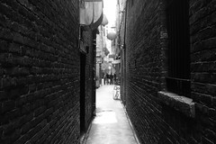FanTan Alley BW (Tom_Jones7) Tags: travel travelling life city adventure travelphotography travelbug passion travelmore goexplore newplaces myview explorer photo photograph photographer lifestyle canon road trip roadtrip bc british columbia canada 2017 2k17 fantan alley fantanalley black white blackwhite bw bnw blackwhitephoto monochrome fan tan dof depth field shallow brick wall brickwall excellentbnw noir blackwhitelife noirvision contrast photographyislife photographerlifestyle justgoshoot icatching exploringtheworld optoutside exploretocreate discover discoverearth travelphoto worldpics stayandwander goroam keepexploring travelworld mylifeinphotos