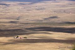 La Serena, ferme   farm ([ ͆ ◎] Bernard LIÉGEOIS) Tags: espagne españa spain estrémadure extremadura laserena benquerenciadelaserena paysage landscape