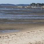 Marée basse sur le port ostréicole, Andernos-les-Bains, Gironde, Aquitaine, France. thumbnail
