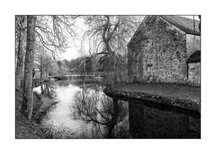 01575 Site de Port-Royal des Champs (Oeil de verre) Tags: france 78yvelines magnyleshameaux portroyaldeschamps monochrome