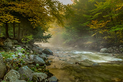 Stowe, Vermont (Al Fontaine) Tags: stowe vermont nature golden hour watercourse water fall foliage moss leaves