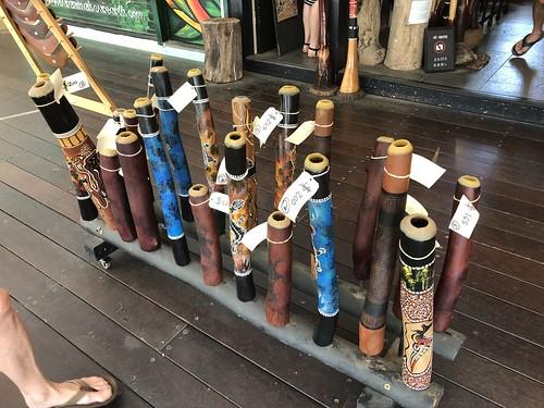 IMG_0728 Didgeridoos for sale (real ones)