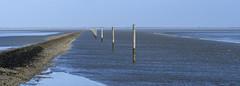 Neuharlingersiel (deakb) Tags: nikon nikkor d500 2470 f28 deutschland germany nordsee strand neuharlingersiel port hafen wattenmeer waddenzee wadden sea water sand winter sky road