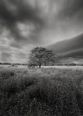 Just before the Storm (Chamikajperera) Tags: landscape storm longexpo exposure canon sri lanka bnw black white anuradhapura