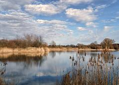 szachty 1 (KRR_3) Tags: sony a6000 nex lake pond spring poznan poznań szachty