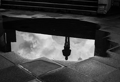 The Man (Peter Murrell) Tags: reflection reflecting reflections puddle water silhouette stairs southbank man shadow puddles rain mirror