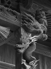 Hachiman shrine (murozo) Tags: hachiman shrine kosagawa nikaho akita japan wood architecture monochrome 八幡神社 神社 小砂川 にかほ 秋田 日本 木 龍 dragon