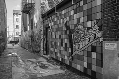 Bolivar Alley (pasa47) Tags: 2019 march fujifilm fujixe1 1855mm spring pendleton cincinnati ohio bolivaralley alley graffitialley