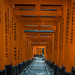 Schrein Fushimi Inari