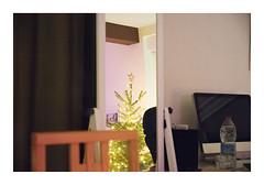_K002207 (Jordane Prestrot) Tags: ♑ jordaneprestrot noël christmas navidad miroir mirror espejo sapin christmastree árboldenavidad