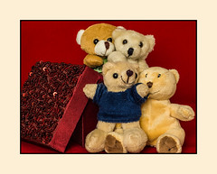 """""""Smile it's that picture maker thing again!"""" (fenman_1950) Tags: teddybears teddybeartuesday sonya77 portrait"""