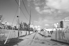 "Service Alley - Ocean Court, Miami Beach <a style=""margin-left:10px; font-size:0.8em;"" href=""http://www.flickr.com/photos/74925381@N03/32131012867/"" target=""_blank"">@flickr</a>"