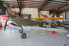 NL977WH (55) Curtiss Wright P-40N Warhawk United States Air Force 'American Dream' Kissimmee Municipal 25th October 2018 (michael_hibbins) Tags: nl977wh 55 curtiss wright p40n warhawk united states air force american dream nose on kissimmee municipal 25th october 2018 n america usa us untied