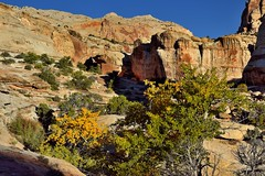 The Whole of a Setting Around Hickman Bridge (Capitol Reef National Park)