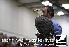 Earth Wellness Festival 2019 - The Raptors - Bald Eagle _ 05 (UNL Extension in Lancaster County) Tags: raptor raptors world bird sanctuary bald eagle