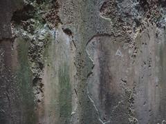 Piscina Mirabilis (angelo.delsorbo) Tags: campiflegrei piscinamirabilis bacoli cuma scavidicuma sibilla antrodellasibilla sibillacumana pozzuoli anfiteatroflavio casinavanvitelliana