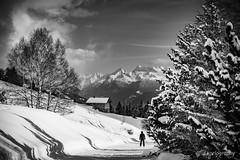 timeless (koriography) Tags: cransmontana fujifilm fuji xphotographer xh1 xf1655mm28 switzerland schweiz valais aminona ski alpes alpen xpro2 xf1855