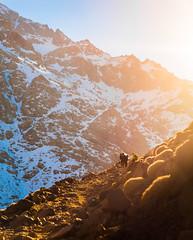 2018-12-31_18-31-38_IMG_8848 (Max Dawncat) Tags: morocco maroc maghreb atlas mountains toubkal hiking trekking travel travelphotography