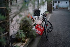 Mituhama (yuyosimu) Tags: planar zeiss sel50f14z fe5014za a7rii fe50mmf14 planar50mm fe50 fe50mm