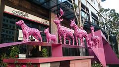 粉紅色動物 Pink Animals (葉 正道 Ben(busy)) Tags: 台中 台灣 taichung taiwan 道路 people road 路 狗 dog street 街景