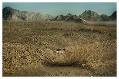 Khorasan Desert_2 (bit ramone) Tags: khorasan desert viajes irán asia travel جمهوریاسلامیایران bitramone pentax pentaxk3ii خراسان arena sand montaña mountain