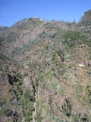 IMG_8048 (wallygrom) Tags: madeira funchal monte botanicalgarden jardimbotânicodamadeira cablecar teleferico