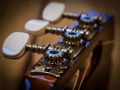 Guitar headstock (pct4nic) Tags: macromondays hobby guitar