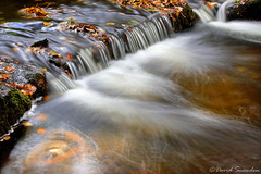 West Burton Flow (Dave Snowdon (Wipeout Dave)) Tags: davidsnowdonphotography canoneos80d landscape stream water waterfall westburton northyorkshire yorkshiredales yorkshire longexposure autumn fall leaves