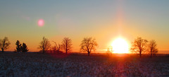 """Photo Series: Travel in Ontario: """"A warm looking sunset at -20C"""" (Ken Whytock) Tags: winter orange sun trees cold"""