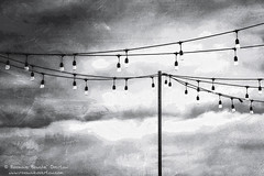 Strings of Light (Roxanne Bouche' Overton) Tags: sf2018 lights roxanneoverton roxanneboucheoverton fineartphotography photooftheday picoftheday contemporaryphotography bw monochrome shadesofgray california visitcalifornia sanfrancisco sf sfguide 49miles