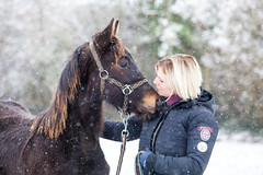 Indy's first snow (René Maly) Tags: renémaly horse foal paard veulen sneeuw snow explore