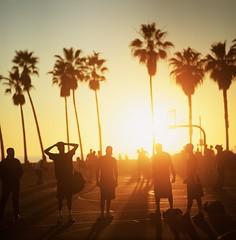 Nothing beats the golden hour ☀️ (jaxting) Tags: e6 jaxting basketball people street candid goldenhour sunset venicebeach filmisnotdead istillshootfilm velvia velvia50 sonnar p6 pentaconsix
