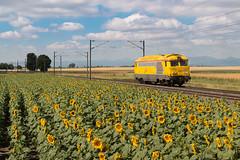 Jaune (videostrains) Tags: bb67000 bb67400 bb67617 infra jaune tournesols auvergne train sncf fret hlp haut le pied railway riom clermont ferrand vichy randan bourbonnais limagne