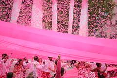 IMG_8809 (lightandshadow1253) Tags: washington dc cherry blossom parade cherryblossomparade2019 washingtondc