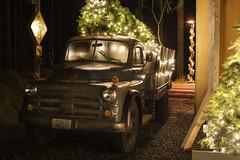 Christmas Truck (Curtis Gregory Perry) Tags: seabrook washington dodge pickup truck night 1952 jobrated christmas tree light nikon d810 classic vehicle automóvil coche carro vehículo مركبة veículo fahrzeug automobil